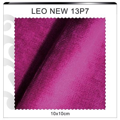 LEO NEW 13P7